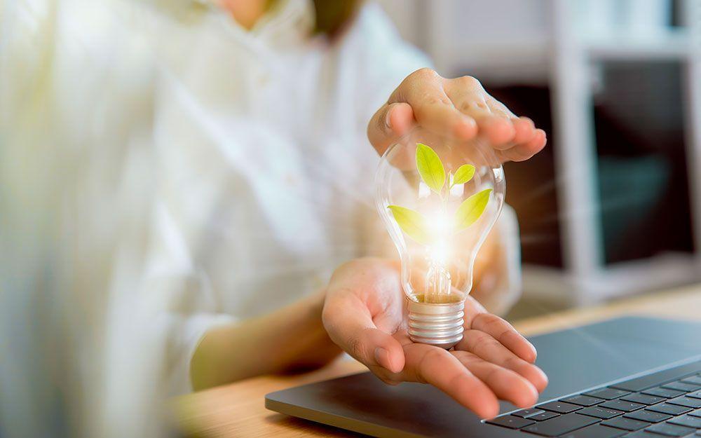 ¿Cómo conseguir que tú empresa sea más sostenible?